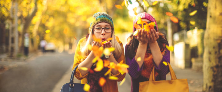 Our Guide to Fall Activities for Kids this Season at Washington & 157